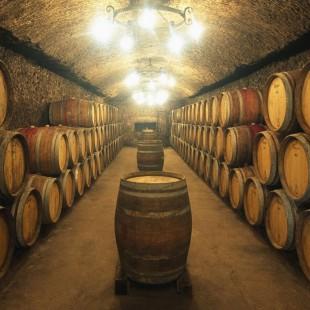 Mendoza – Viva o melhor dos Vinhos e a Gastronomia Argentina.